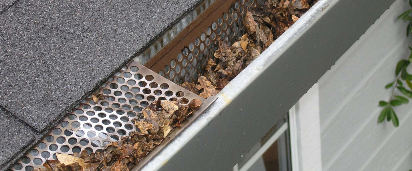 Don't Get Bogged Down by Clogged Gutters